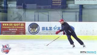 BP Hockey - držanie hokejky