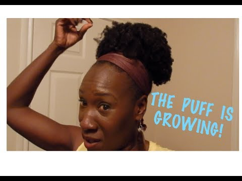 THE PUFF IS GROWING! | Black and Natural in Jerusalem #266