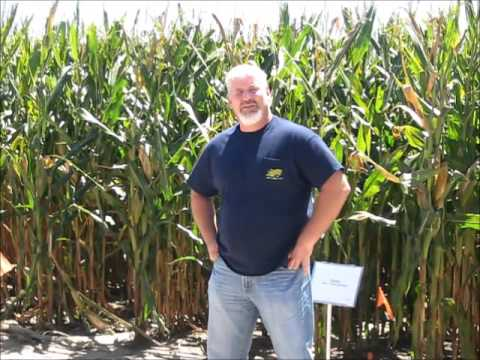 Champion Corn Grower Randy Dowdy
