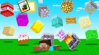 Minecraft BUT Blocks Are FALLING From The SKY! (impossible)