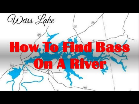 How To Find Bass On A River -  Weiss Lake Bass Fishing