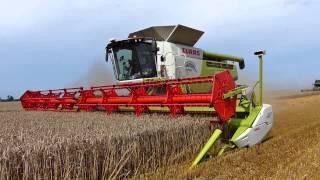 Konwój 7 kombajnów | 5 traktorów | Sound of Harvest 2014 | 7 combines harvesters convoy
