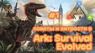СОВЕТЫ и СЕКРЕТЫ Ark: Survival Evolved #1 Как играть?