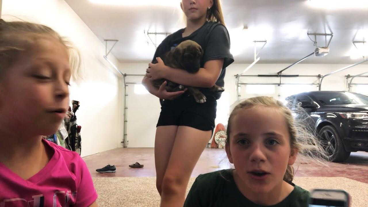 Triple Yoga Challenge Youtube