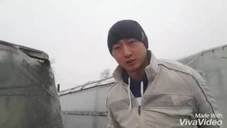 Корейская теплица. Не стройте двухскатную теплицу под прямым углом!!!