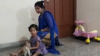 Customer Feedback - Bhola Shola Mp3
