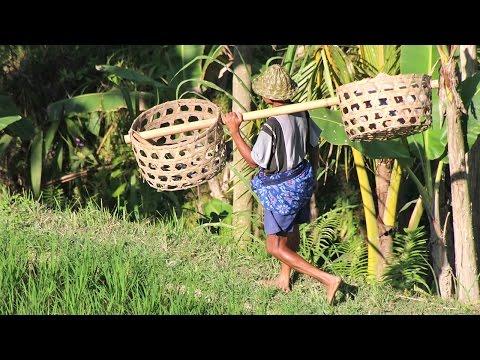 Bali Best Places – Sehenswürdigkeiten und Strände