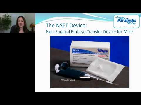 Barbara Stone - The Future of Mouse Embryo Transfer Achieving the 3Rs with the NSET Device