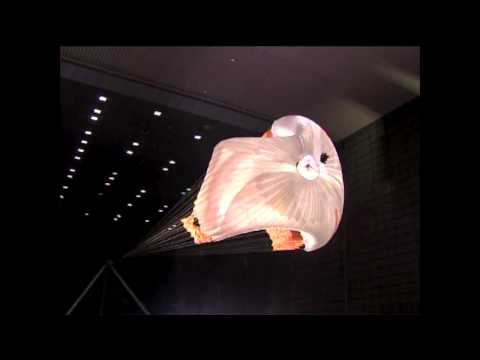 Ames MSL Parachute Testing Video Footage