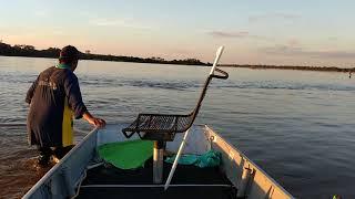 Baixar Piraiba de 1,64 MT rio Araguaia Luiz Alves guia de pesca farinha