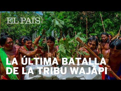 La última batalla de la tribu wajãpi contra el hombre blanco |Internacional