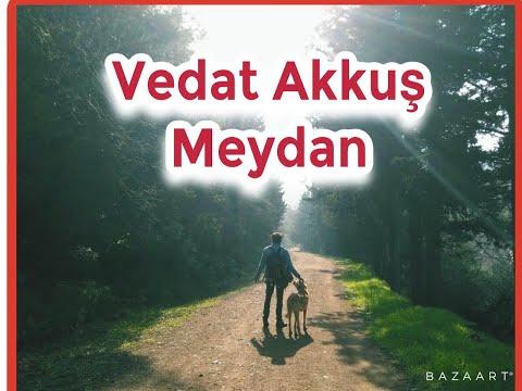 Emir Can İĞREK / Meydan ( cover )