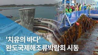 '치유의 바다' 완도국제해조류박람회 시동