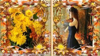 С Днем Рождения, Дорогая! Красивое поздравление в красках осени!