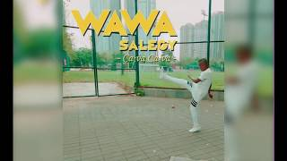 Wawa Salegy Ca va Ca va - audio.mp3