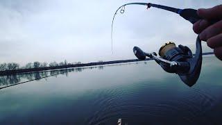 ВОДА КИПИТ ОТ РЫБЫ Попал на весенний ЖОР СУДАКА Рыбалка на спиннинг