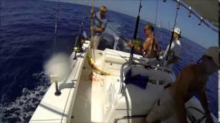 "Mahi Fishing - ""The Nipple"" - May 8, 2014"