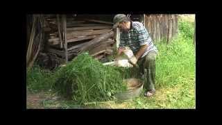 Как делать компост (bochka)