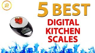 ✅ Best Digital Kitchen Scales (2019)