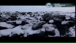 Использование абсорбента Spill-Sorb на земле Франца-Ииосифа(Отрывок из телепрограммы