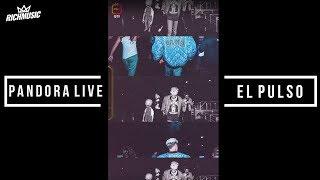 Pandora LIVE: El Pulso (IGTV)