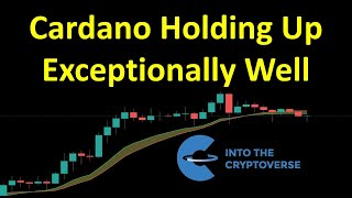 Cardano Holding Up Exceptionally Well