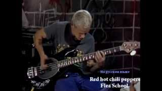 Flea.... Школа игры на бас гитаре . (Русская версия).mpg