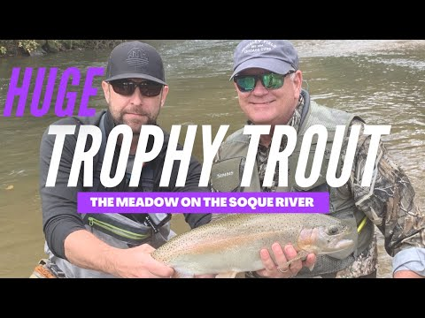Huge Trophy Trout At The Meadow On The Soque River (Guide Trip)