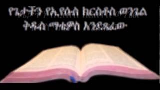 Amharic Audio Bible - Matthew የጌታችን የኢየሱስ ክርስቶስ ወንጌል ቅዱስ ማቴዎስ እንደጻፈው
