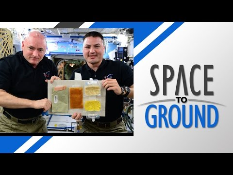 NASA Shares Space Thanksgiving on ISS Low Earth Orbit