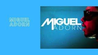 Miguel Adorn  Lyrics Old School R&B Music Love Song