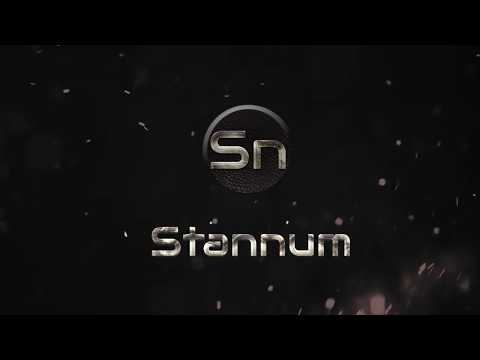 Stannum Coin