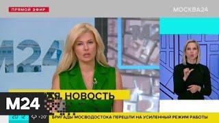 Экстренные службы Подмосковья перешли в режим повышенной готовности из‑за ливня - Москва 24