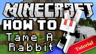 Minecraft How To: Tame & Breed Bunny Rabbits!