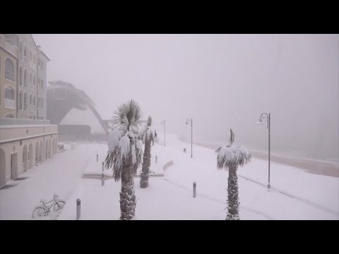 Italy - Heavy snowfall covers beaches and palm trees on the Adriatic coast