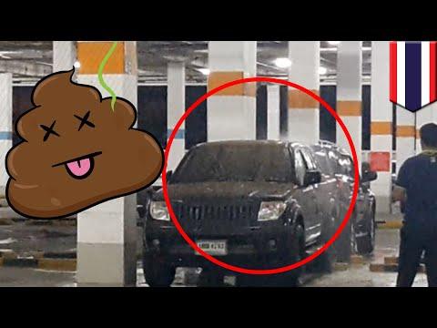 Hujan kotoran di parkiran Thailand - TomoNews