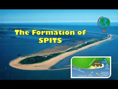 How Coastal Spits are formed - labelled diagram and explanation