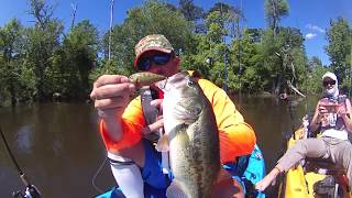 "30milesOut.com ~    ""HOLY TOLEDO""  kayak bass fishing"