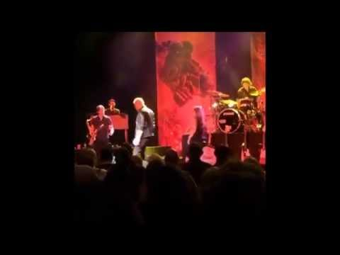 Veteran singer Meat Loaf collapses on stage in Canada - Euro Weekly News