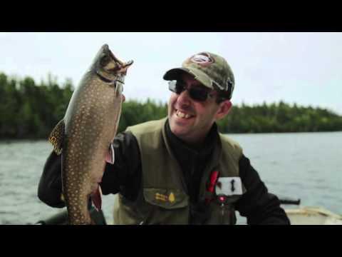 Chasse à l'ours et pêche à la Réserve faunique Duchénier