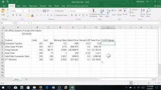 Creating a Sales Report in Excel:   Basic Level