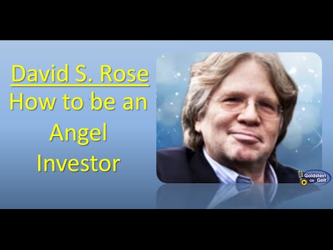 David S. Rose - How to be an Angel Investor - interview - Goldstein on Gelt - July 2014