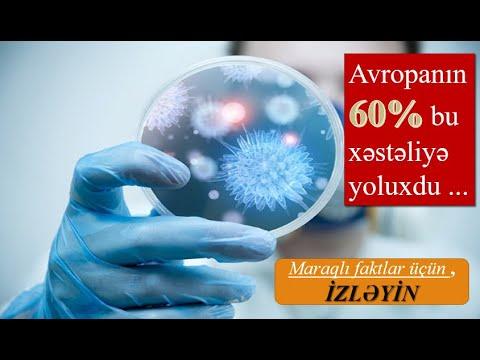koronavirus,-ebola,-ÇİÇƏk-xƏstƏlİyİ,-veba,-qİÇs-–-yolxucu-xəstəliklər-–-z---baŞlanĞici