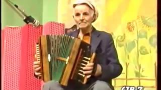 Дмитрий Степанищев - Елецкая рояльная гармонь