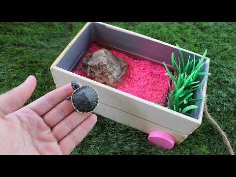 Build Baby TURTLE Dream Pond!! **$500 Challenge**