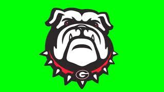 Georgia bulldogs logo chroma