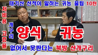 태기산 산적 북방 산개구리 양식기술 분양 인터뷰 양식장…