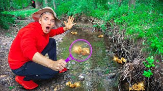 ABANDONED GOLD MINE FOUND in SHARER FAM BACKYARD!!