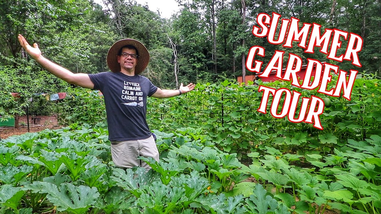 Summer Garden Tour [Growing Your Own Food Series with Homesteaders Of America]