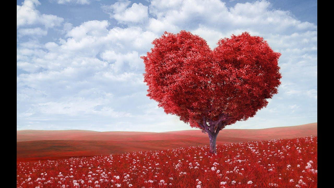 Výsledek obrázku pro láska